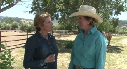 Sandy Collier Talks Horses & Riding to Win