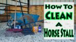 How To Clean A Horse Stall