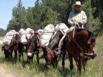 Horse Packer Documentary