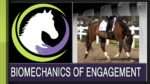 Engaging Your Horses